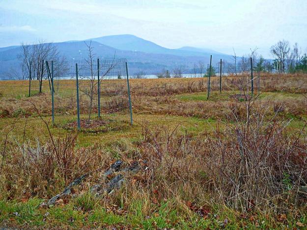 4. Ashokan Reservoir from High Point Mountain Road