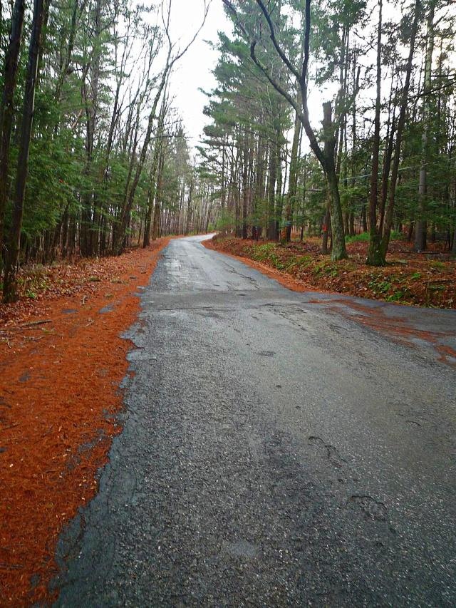 6. Watson Hollow Road