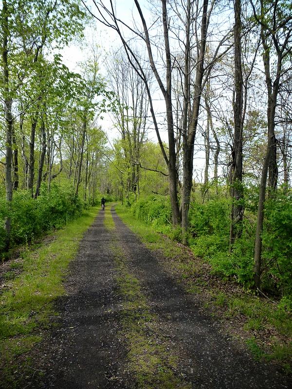 7 bike path_pe