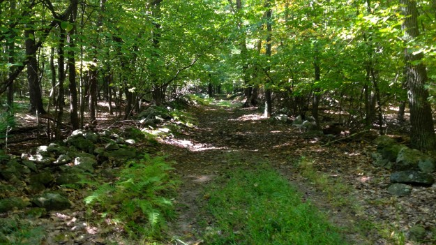 13. Rock Hill Road backward