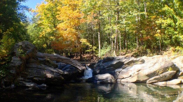 19. Lundy Road Swimming Hole