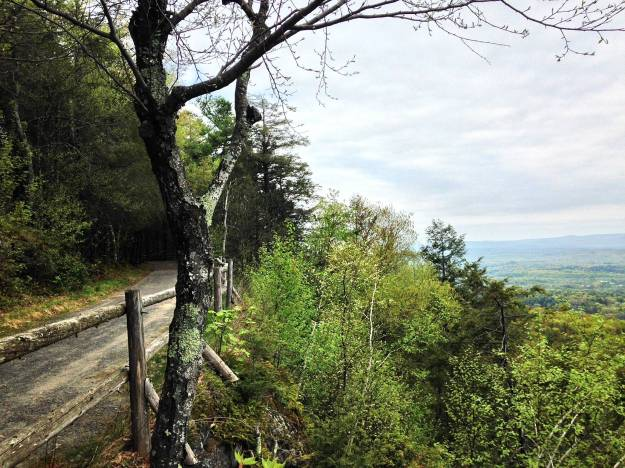 lookout_trail
