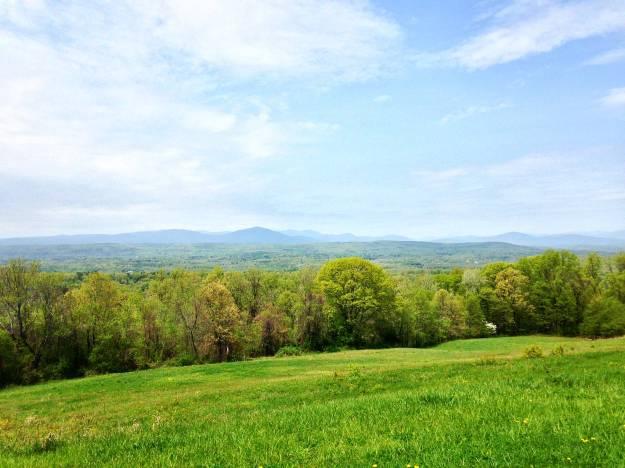 spring_farm