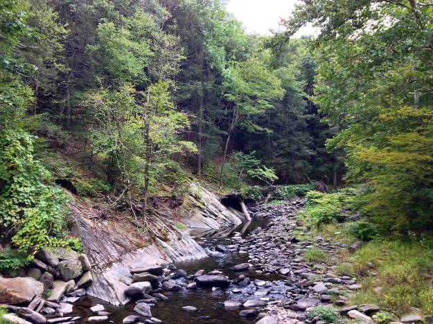 Sandburg Creek outside of Ellenville.
